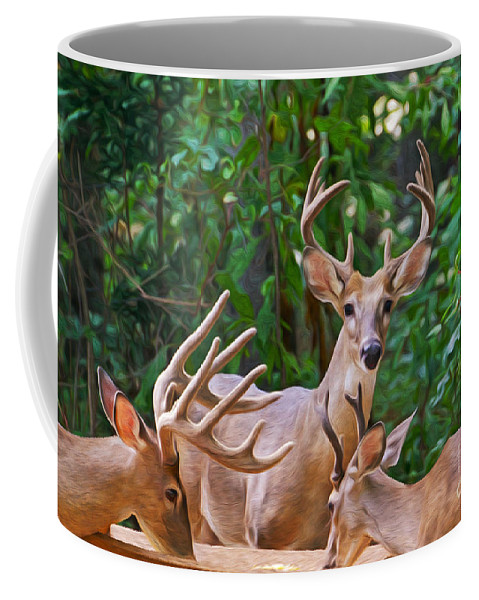 Male Deer Coffee Mug featuring the photograph The Guys Grab A Bite by Laura D Young