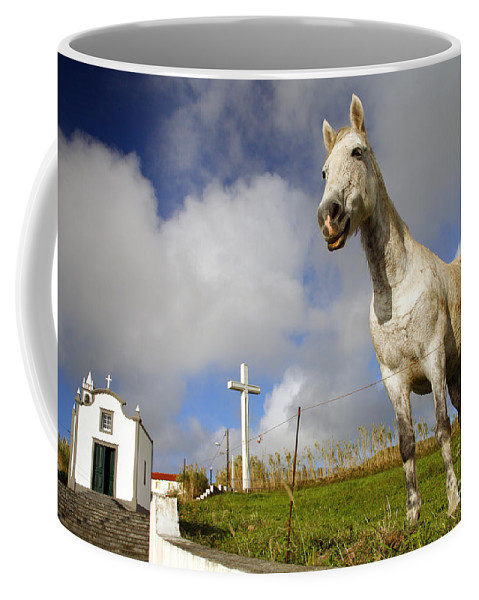 Portugal Coffee Mug featuring the photograph The Horse And The Chapel by Gaspar Avila