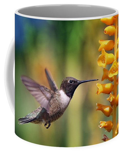 Hummingbird Coffee Mug featuring the photograph The Hummingbird And The Bee by William Freebilly photography