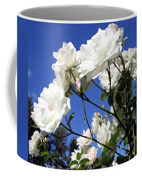 Roses Coffee Mug featuring the photograph The Iceberg Rose by Will Borden