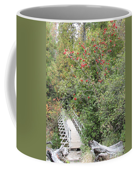 Bridge Coffee Mug featuring the photograph The Journey by Kelly Mezzapelle