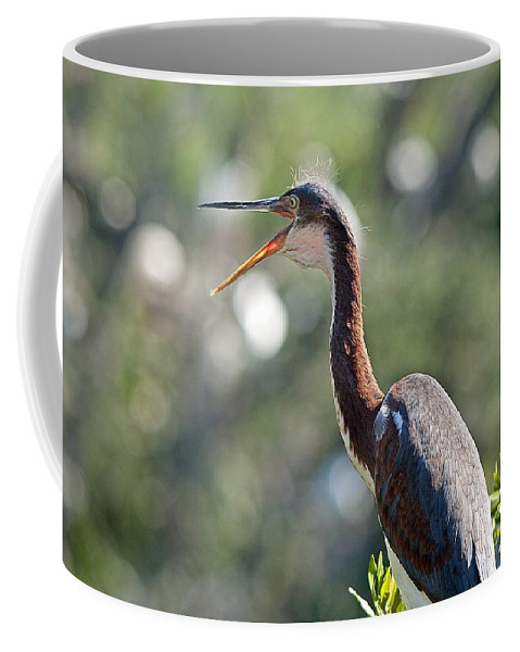 Heron Coffee Mug featuring the photograph The Joy Of Living by Kenneth Albin