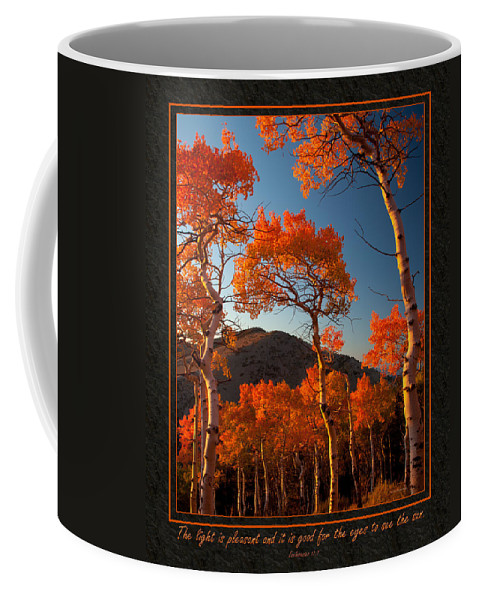 Bible Coffee Mug featuring the photograph The Light Is Good by Ward Thurman