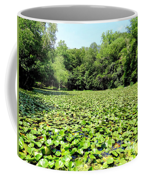 Nature Coffee Mug featuring the photograph The Lily Pond #1 by Ed Weidman
