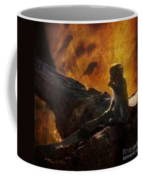 Monkey Coffee Mug featuring the photograph The Little Golumn by Angel Ciesniarska