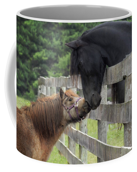 Horses Coffee Mug featuring the photograph The Little Visitor by Fran J Scott