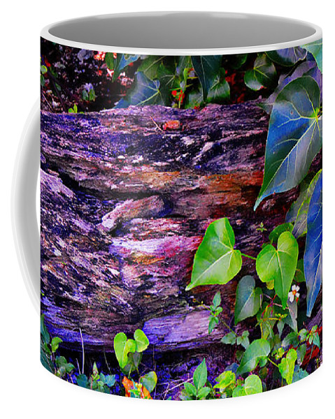 Log Coffee Mug featuring the photograph The Log In The Woods by Kristalin Davis