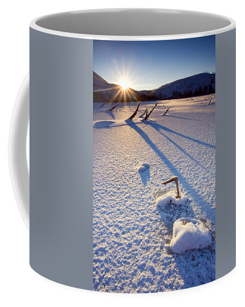 Sunrise Coffee Mug featuring the photograph The Long Shadows Of Winter by Mike Dawson