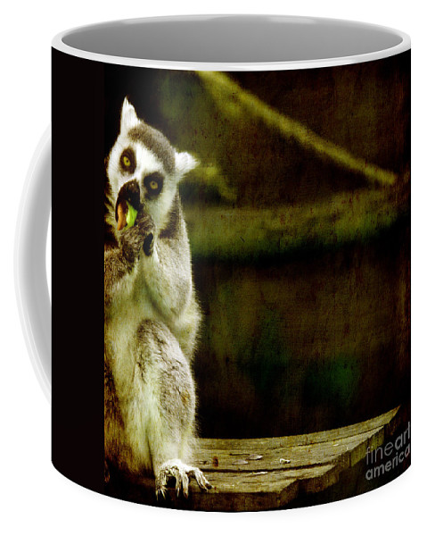 Lori Coffee Mug featuring the photograph The Lori by Angel Ciesniarska