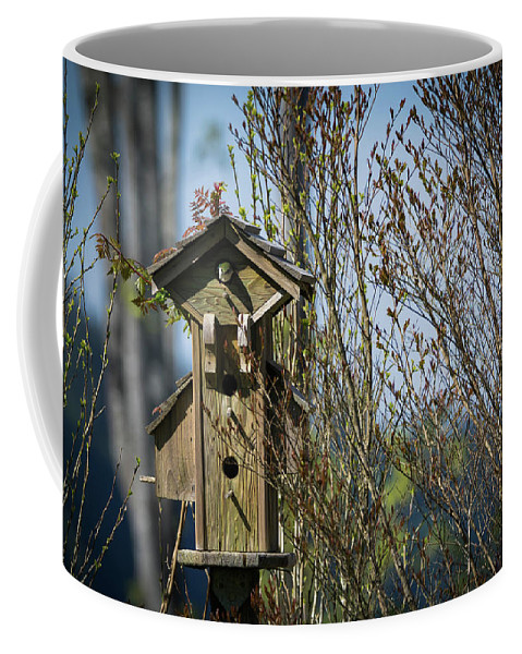 Bird Houses Coffee Mug featuring the photograph The Mansion by James Farrell