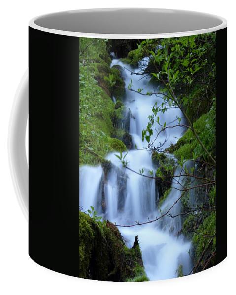 Water Coffee Mug featuring the photograph The Misty Brook by DeeLon Merritt