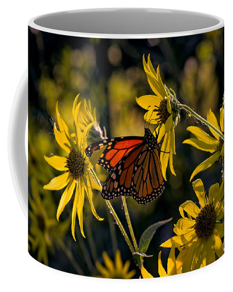 Monarch Coffee Mug featuring the photograph The Monarch And The Sunflower by Rick Berk