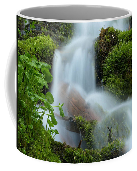 Water Coffee Mug featuring the photograph The Mossy Mist by DeeLon Merritt