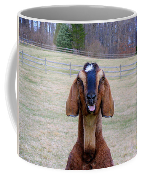 Animals Coffee Mug featuring the photograph The Name Is Billy... by Deborah Crew-Johnson