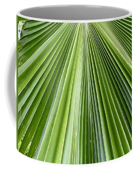 Nature Palm Leaf Frond Branch Fan Green Natural Abstract Hawaii Flora Coffee Mug featuring the photograph The Nature Of My Abstraction by Russell Keating