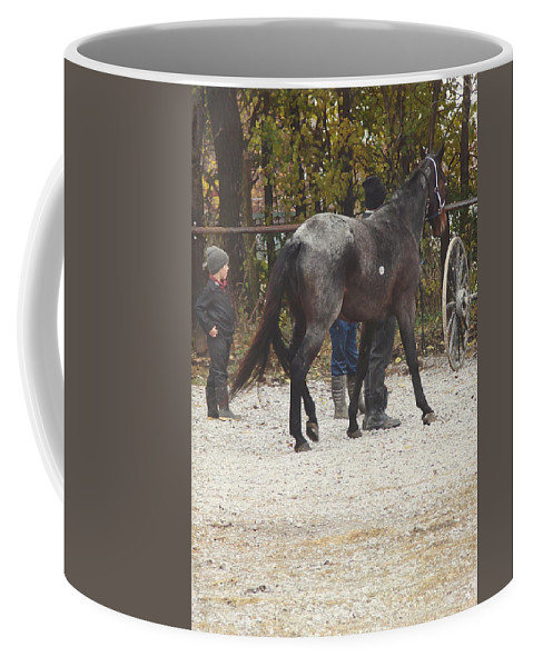 Angelandspot Coffee Mug featuring the photograph The New Horse by Cassie Peters