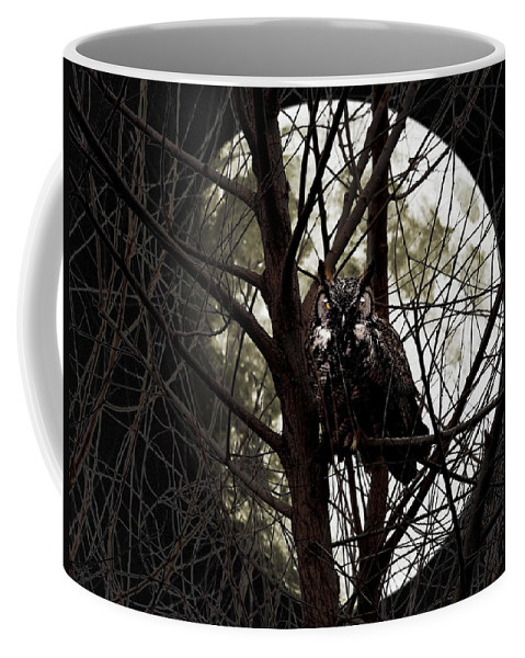 Animal Coffee Mug featuring the photograph The Night Owl and Harvest Moon by Wingsdomain Art and Photography