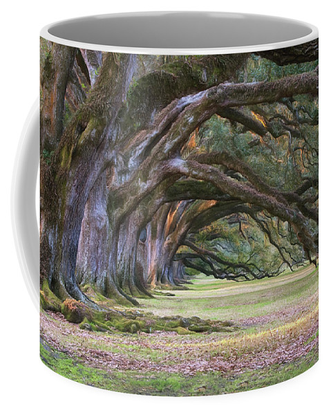 Oaks Coffee Mug featuring the photograph The Oaks Of Oak Alley Plantation by Mitch Spence