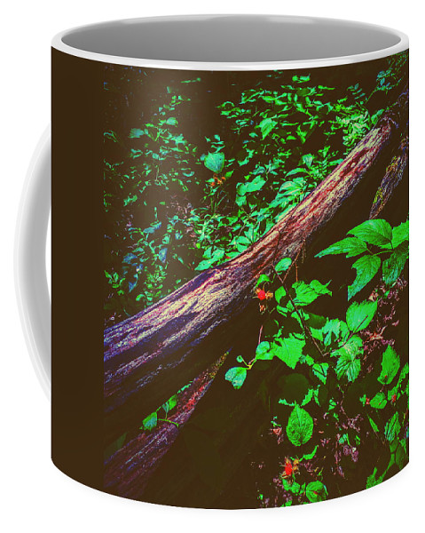 Landscape Coffee Mug featuring the photograph The Old Fence by Paul Kercher