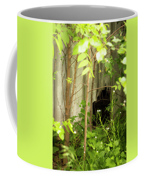 Landscape Coffee Mug featuring the photograph The Old Homestead #10 by Beth Hedley
