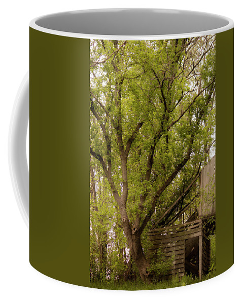 Landscape Coffee Mug featuring the photograph The Old Homestead #2 by Beth Hedley