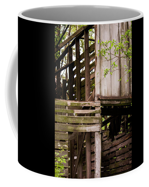 Landscape Coffee Mug featuring the photograph The Old Homestead #5 by Beth Hedley