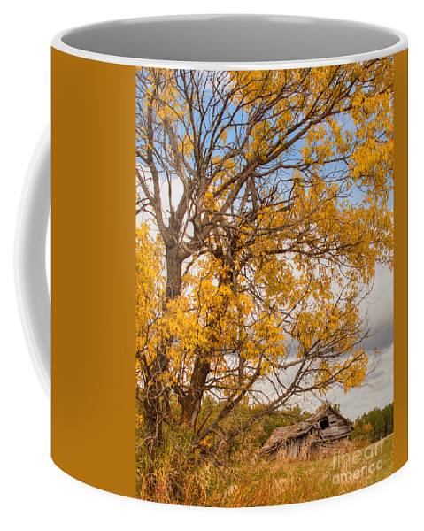Canada Coffee Mug featuring the photograph The Old Homestead by Colette Panaioti