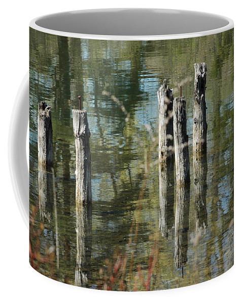 Landscapes Coffee Mug featuring the photograph The Old Swimming Hole by LeeAnn McLaneGoetz McLaneGoetzStudioLLCcom