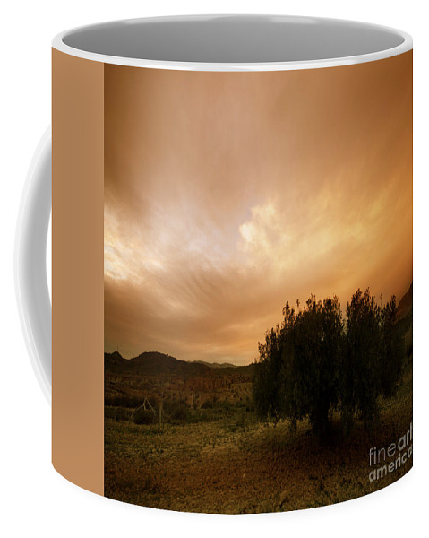 Mountains Coffee Mug featuring the photograph The Olive Tree by Angel Ciesniarska