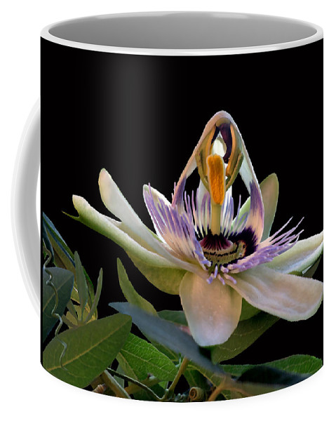 Flor De La Passion Coffee Mug featuring the photograph The Opening Of A Passion by Madalena Lobao-Tello