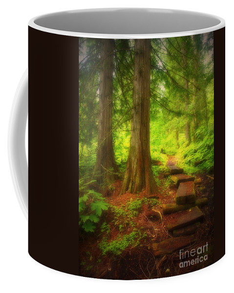 Forest Coffee Mug featuring the photograph The Path Through The Forest by Tara Turner