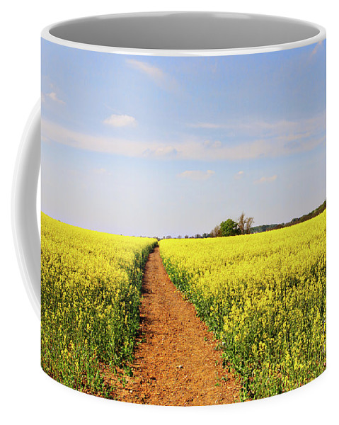 Canola Coffee Mug featuring the photograph The Path To Bosworth Field by John Edwards