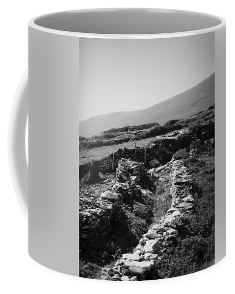 Irish Coffee Mug featuring the photograph The Path To The Beehive Huts In Fahan Ireland by Teresa Mucha