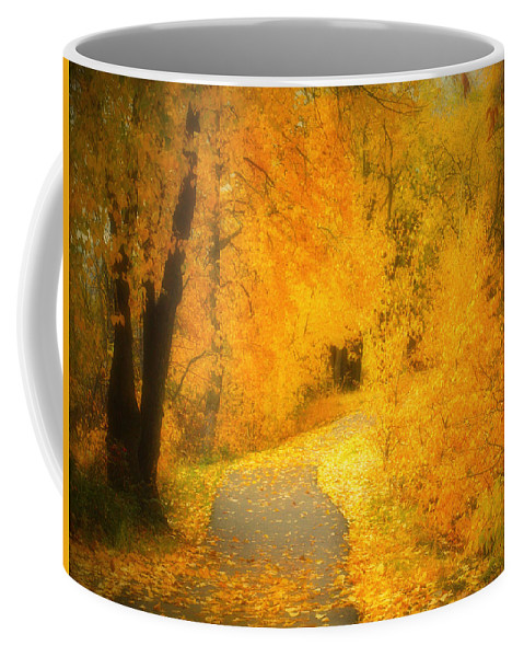 Autumn Coffee Mug featuring the photograph The Pathway Of Fallen Leaves by Tara Turner