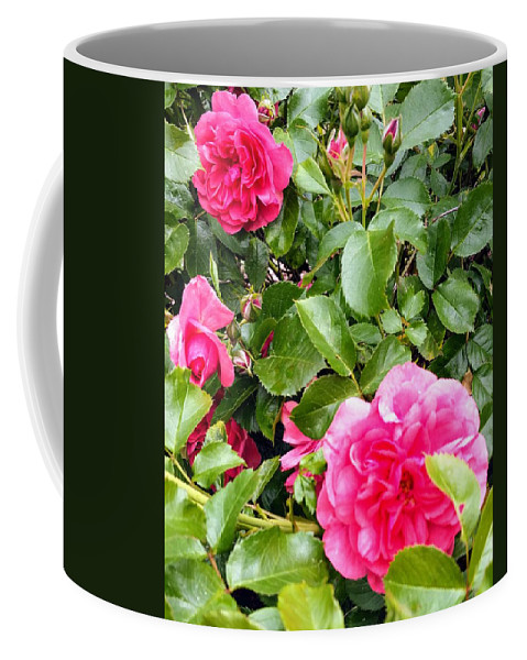 Botanical Flower's Nature Coffee Mug featuring the photograph The peaceful place 10 by Valerie Josi