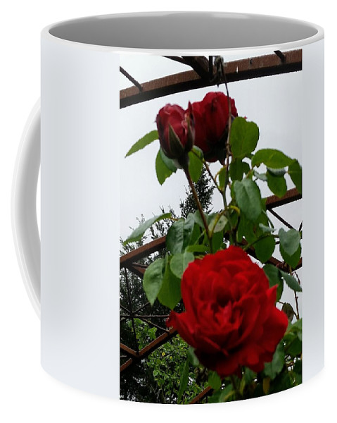 Botanical Flower's Nature Coffee Mug featuring the photograph The peaceful place 7 by Valerie Josi