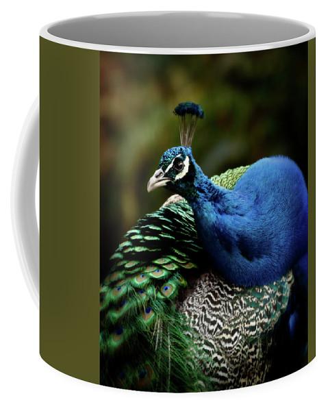 Peafowl Coffee Mug featuring the photograph The Peacock - 365-320 by Inge Riis McDonald