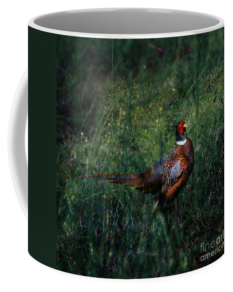 Pheasant Coffee Mug featuring the photograph The Pheasant In The Autumn Colors by Angel Ciesniarska