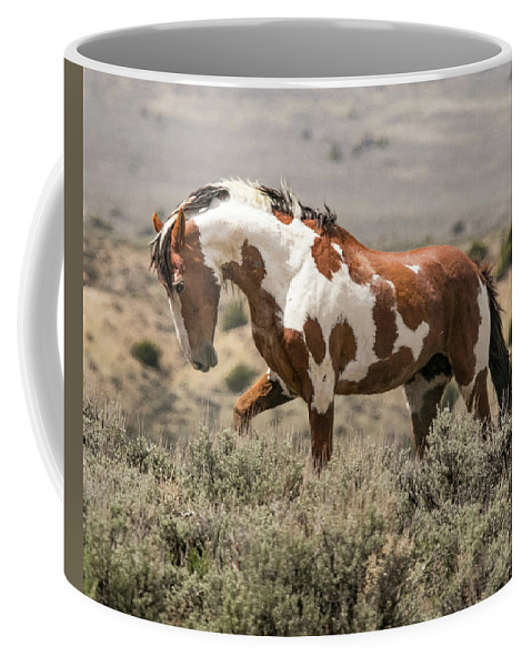 2018 Coffee Mug featuring the photograph The Picasso Strut by Debbie Rudd