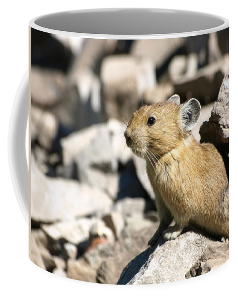 Animals Coffee Mug featuring the photograph The Pika by DeeLon Merritt
