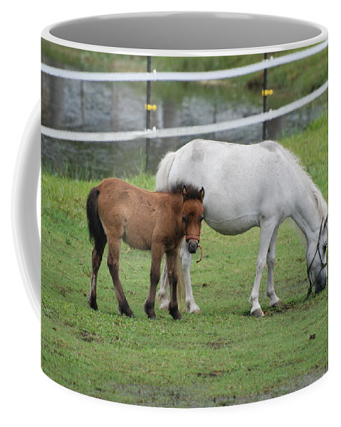 Horse Coffee Mug featuring the photograph The Ponys by Rob Hans