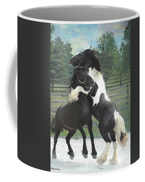 Horses Coffee Mug featuring the photograph The Posturing Game by Fran J Scott