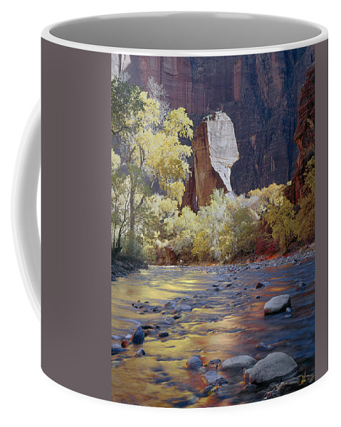 The Pulpit Coffee Mug featuring the photograph 312447-the Pulpit by Ed Cooper Photography