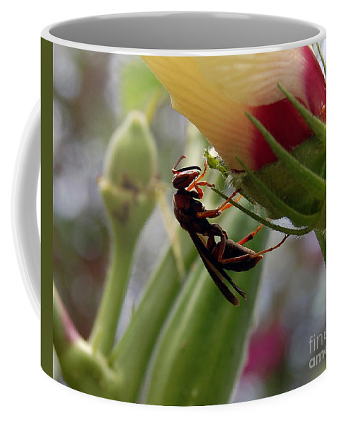 Red Wasp Coffee Mug featuring the photograph The Real Gardener 2 by Robert Meanor