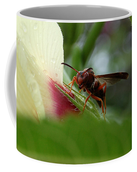 Wasp Coffee Mug featuring the photograph The Real Gardener by Robert Meanor