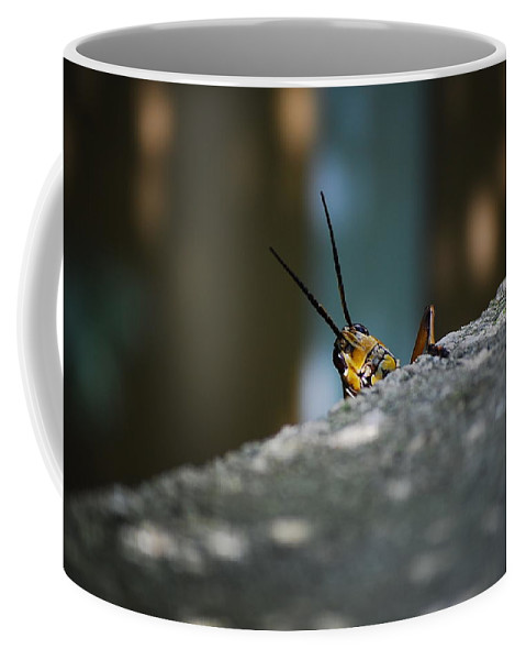 Bugs Coffee Mug featuring the photograph The Real Hopper by Robert Meanor