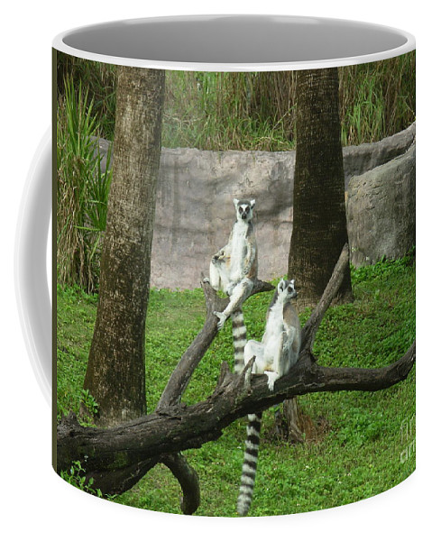 King Coffee Mug featuring the photograph The Real King Julian by Chad Kroll