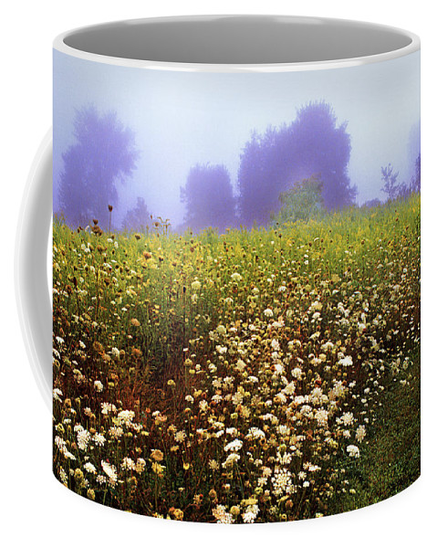 New York State Coffee Mug featuring the photograph The Secret Garden by Yuri Lev