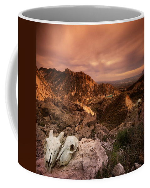 Skull Coffee Mug featuring the photograph The Silence Of Lambs by Angel Ciesniarska