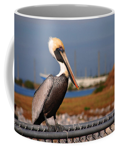 Yellow Pelican Coffee Mug featuring the photograph The Single Guy by Susanne Van Hulst